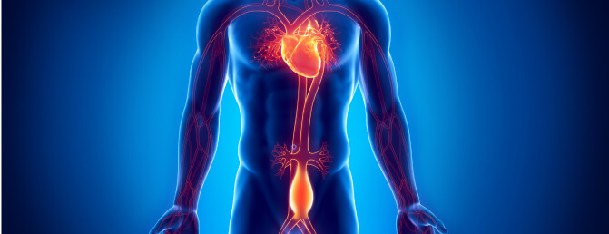 Impact of OSA on Abdominal Aortic Aneurysm